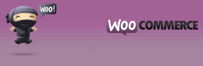 I migliori plugin gratuiti per WordPress Osting.it